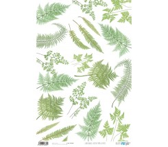 Papel Cartonaje 32 x 48,3 cm Green Fern Leaves